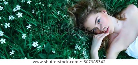 Beautiful girl mentiras grama verde parque cara mulheres Foto stock © ruslanshramko