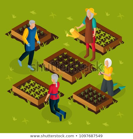 Pension Retirement Isometric Icons Set Vector Stock photo © pikepicture