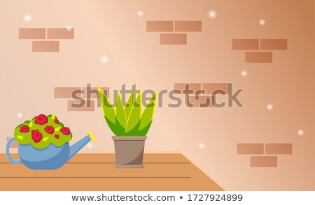 House evergreen plant in pot and red flowers in watering can stand on a table against a brick wall Stock photo © robuart