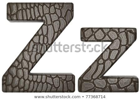 Alligator Skin Font Z Lowercase And Capital Letters Stok fotoğraf © Arsgera