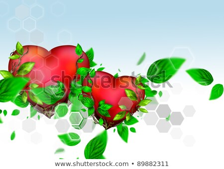 two beautiful bright hearts of red color with green leaves float stock photo © hasloo