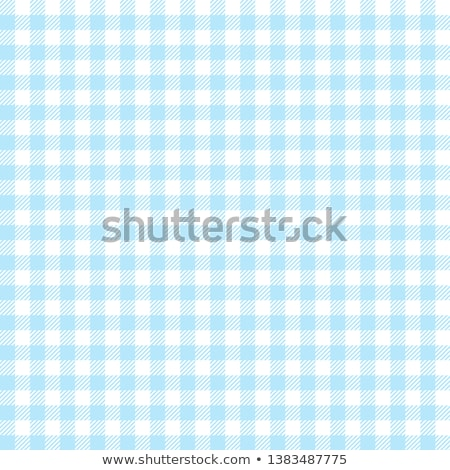 Table Cloth Background : Blue Picnic Tablecloth Background Stock photo: blue checkered