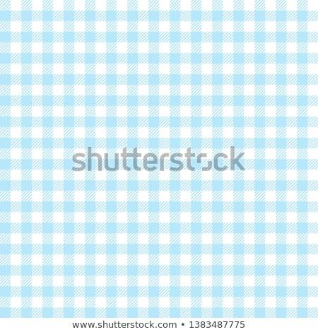 blue checkered rural tablecloth background Stock photo © lightpoet