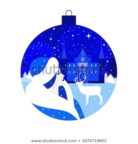 Stock fotó: Nő · karácsony · kabát · kék · labda · modell