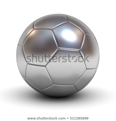 Soccer ball on reflecting grass Stock photo © tilo