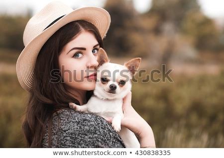 girl and chihuahua stock photo © cynoclub