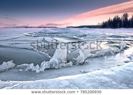 озеро Онтарио зима мнение пляж Сток-фото © brianguest
