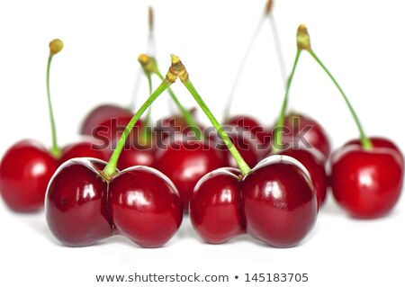 Two juicy ruby red cherries Stock photo © Armisael