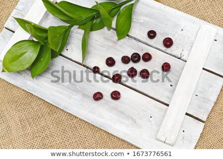 Juicy ruby red cherries in a green cup Stock photo © Armisael