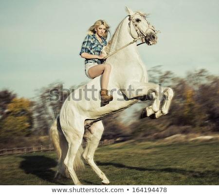 Stok fotoğraf: Blonde Woman Riding A Horse