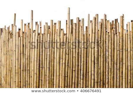 çit · arka · plan · eski · ev · ev · ahşap - stok fotoğraf © unweit