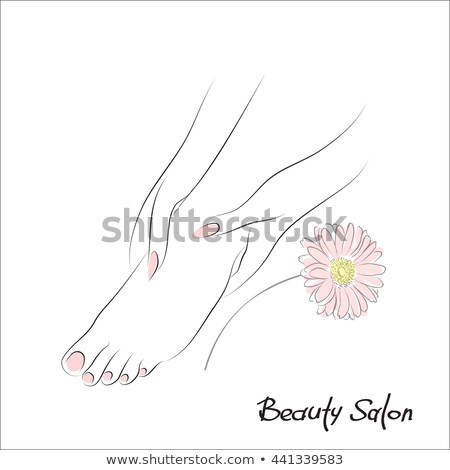 neat female legs with a gerbera flower stock photo © nobilior