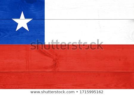 Chile retro zászló klasszikus grunge öreg Stock fotó © RedKoala