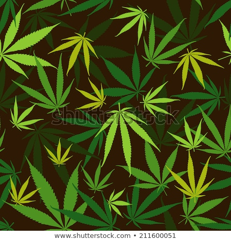 Hemp leaves seamless pattern, vector, EPS8 Stock photo © pashabo