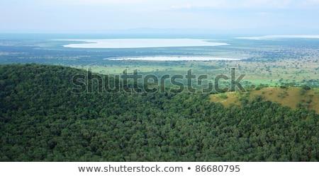 Ouganda panoramique vue Afrique ciel forêt Photo stock © prill