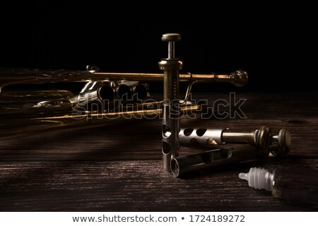 Brass Trumpet Bell and Tubing Stock photo © rhamm