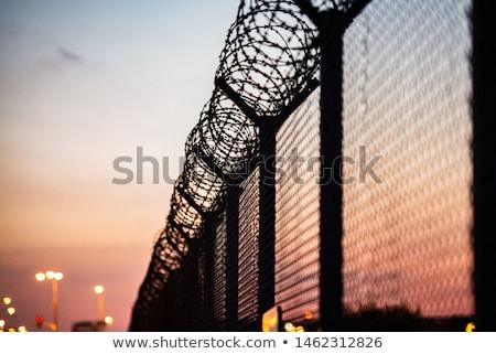 borotva · drót · kerítés · közelkép · rozsdás · fém - stock fotó © itobi