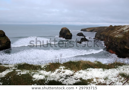 freezing snowcovered coastal beach view and virgin rock Stock photo © morrbyte