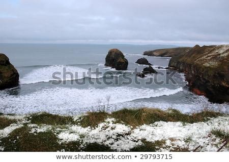 Tengerparti tengerpart kilátás szűz kő hó Stock fotó © morrbyte