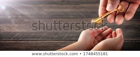 twee · handen · sleutel · behandeling · sleutels · woon- - stockfoto © leeavison