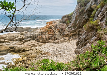 Hiking trail with many steps Stock photo © kawing921