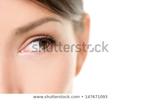 Сток-фото: Eye Close Up - Brown Eyes Looking To Side On White