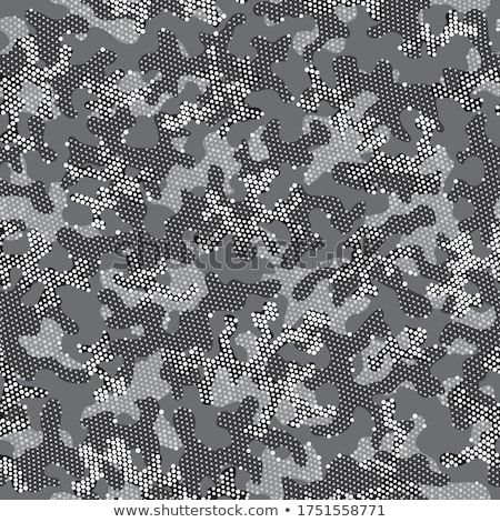 Winter Camouflage. Seamless Tileable Texture. Stock photo © tashatuvango