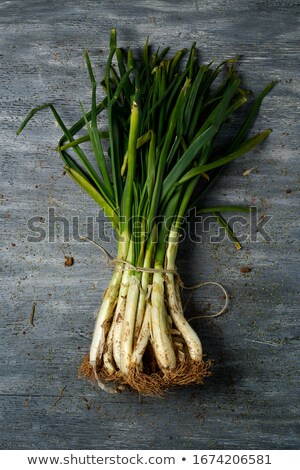 raw calcots, sweet onions, typical of Catalonia, Spain Stock photo © nito