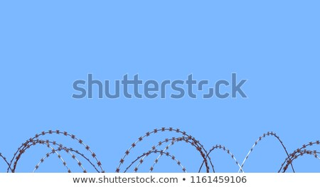 Stock fotó: Coiled Razor Wire On Top Of A Fence