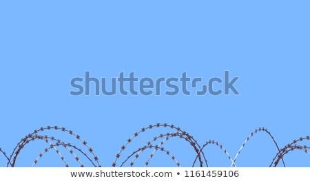 borotva · drót · kerítés · közelkép · rozsdás · fém - stock fotó © juniart