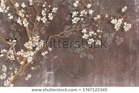 Witte bruin bloem geïsoleerd bloeien bloemen Stockfoto © stocker