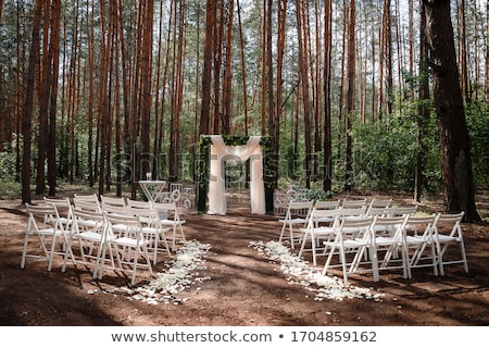 fehér · bankett · sátor · esküvő · kék · ég · nyár - stock fotó © ainat