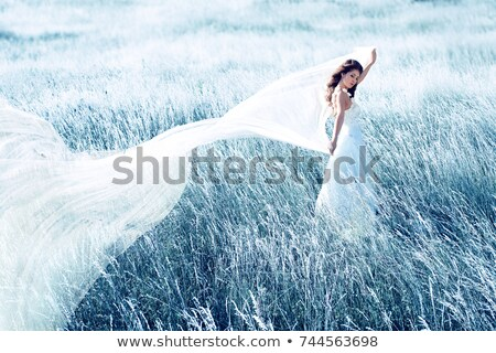 beautiful bride dancing with veil toned in blue stock photo © nejron