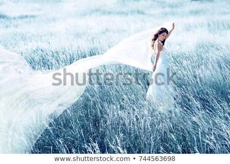 красивой невеста танцы вуаль синий женщину Сток-фото © Nejron