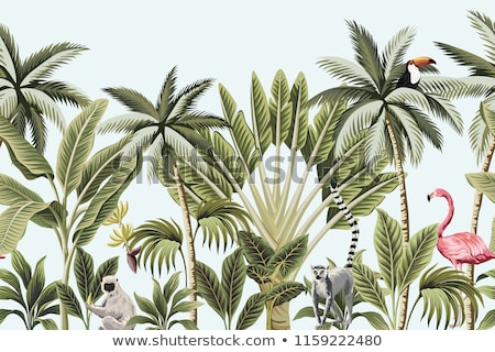 Background with tropical plants and parrots.  Stock photo © pugovica88