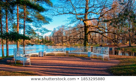 The alley with benches in Catherine park in Pushkin, Russia Stock photo © Pilgrimego