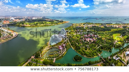 Singapore development Stock photo © joyr