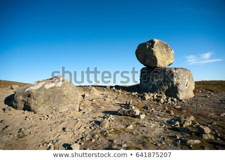 Nagy hegy fennsík nyár kő hegyek Stock fotó © slunicko