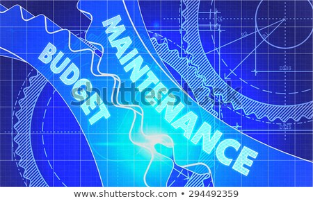 Maintenance Budget on Blueprint of Cogs. Stock photo © tashatuvango