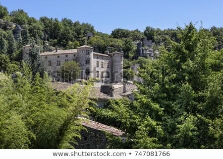 résidentiel · château · dresde · maison · bâtiment · bâtiments - photo stock © haraldmuc