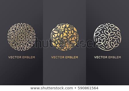 Set of floral circle ornament Stock photo © netkov1