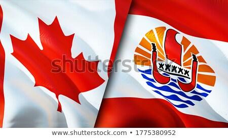 Canada francese polinesia bandiere puzzle isolato Foto d'archivio © Istanbul2009