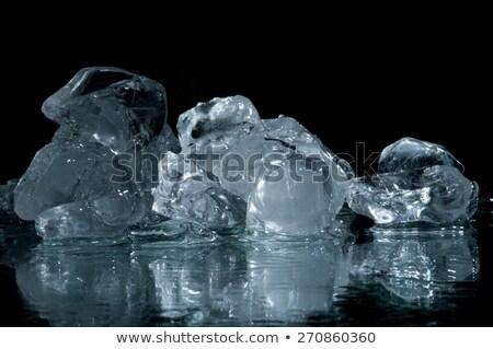 chunks of ice lay on the ground Stock photo © artfotoss