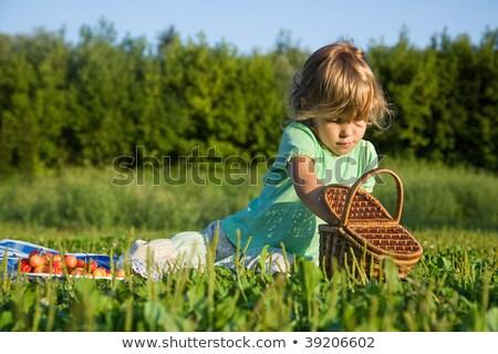 bastante · little · girl · cesta · doce · cerejas · jardim - foto stock © Paha_L