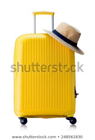 Travel bag isolated Stock photo © shutswis