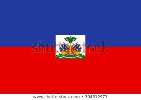 Bandiera Haiti illustrazione bianco segno onde Foto d'archivio © Lom