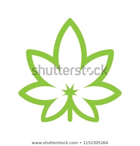 yeşil · kenevir · yaprak · ikon · yalıtılmış · beyaz - stok fotoğraf © pakete