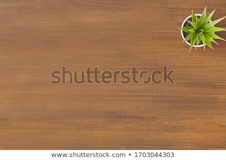 A topview of a wooden table Stock photo © bluering