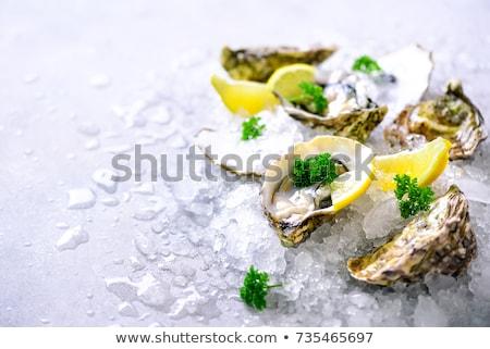 osztriga · kép · körítés · mártás · hal · tenger - stock fotó © artjazz