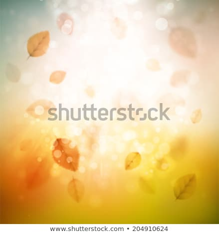 Beautiful autumn background with sun. EPS 10 Stock photo © beholdereye